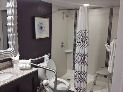 Bathroom |  | Clarion Inn & Suites Across From Universal Orlando Resort