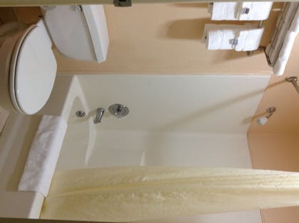 Bathroom | Econo Lodge Inn & Suites Downtown Northeast