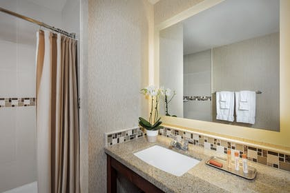 Bathroom Amenities | Bahia Resort Hotel