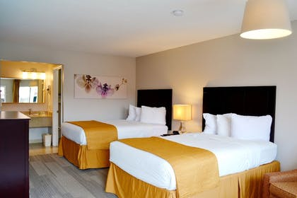 Guestroom View | Quality Inn & Suites By the Parks