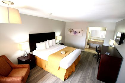 Guestroom | Quality Inn & Suites By the Parks