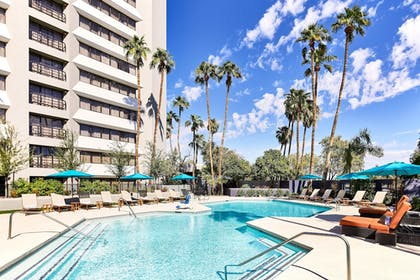 Pool | Delta Hotels by Marriott Phoenix Mesa