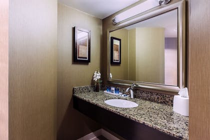 Bathroom | Delta Hotels by Marriott Fargo