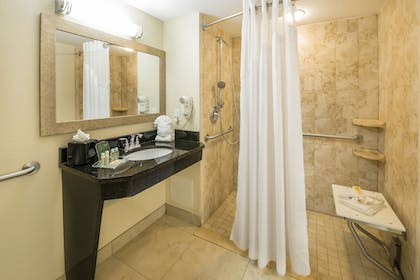 Bathroom | Holiday Inn Resort Orlando - Lake Buena Vista