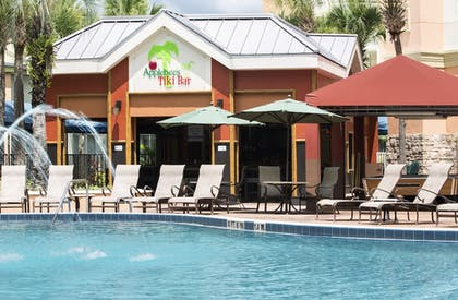 Hotel Bar | Holiday Inn Resort Orlando - Lake Buena Vista