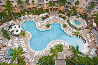 Outdoor Pool   Wyndham Palm-Aire