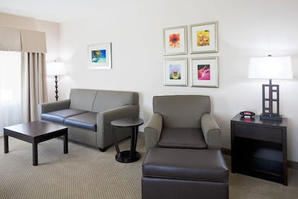 Living Area | Holiday Inn Express Hotel & Suites Marathon