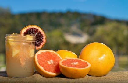 Food and Drink | Tapatio Springs Hill Country Resort and Spa
