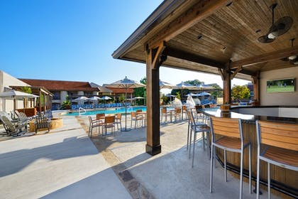 Bar | Tapatio Springs Hill Country Resort and Spa
