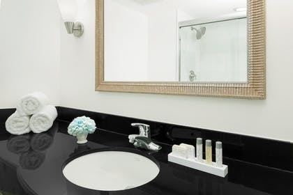 Bathroom Sink | Sawgrass Grand Hotel and Suites Sports Complex