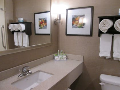 Bathroom | Holiday Inn Express Cloverdale - Greencastle
