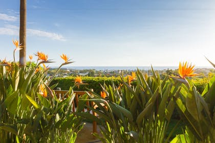 Property Grounds | Grand Pacific Palisades Resort & Hotel