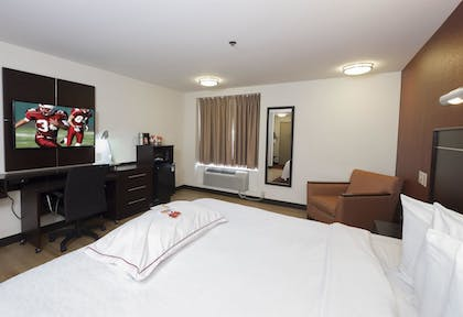 Guestroom | Red Roof Inn PLUS+ Columbus Downtown - Convention Center
