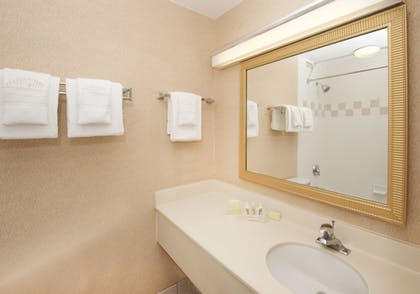 Bathroom | Holiday Inn & Suites Chicago - Downtown