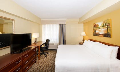 Guestroom | Holiday Inn & Suites Chicago - Downtown