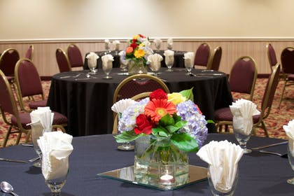 Meeting Facility | Holiday Inn & Suites Chicago - Downtown