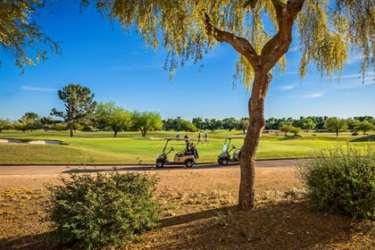 Golf   Scottsdale Marriott at McDowell Mountains