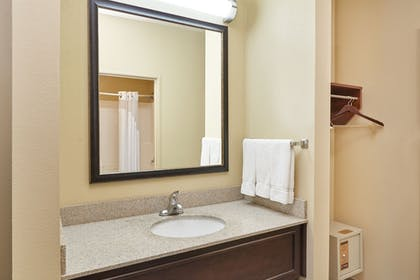 Bathroom | Holiday Inn Express Hotel & Suites Chicago - Libertyville