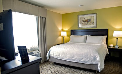 Room | Holiday Inn Express Hotel & Suites Chicago - Libertyville
