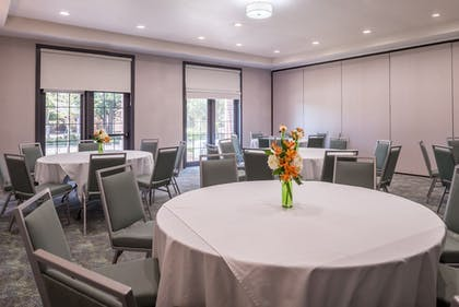 Meeting Facility | Holiday Inn & Suites Dallas-Addison