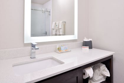 Bathroom | Holiday Inn & Suites Dallas-Addison