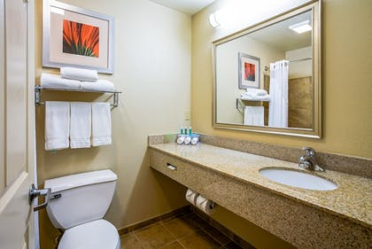 Bathroom | Holiday Inn Express Hotel & Suites Indianapolis North Carmel