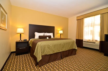 Room | Best Western Plus The Inn & Suites At The Falls