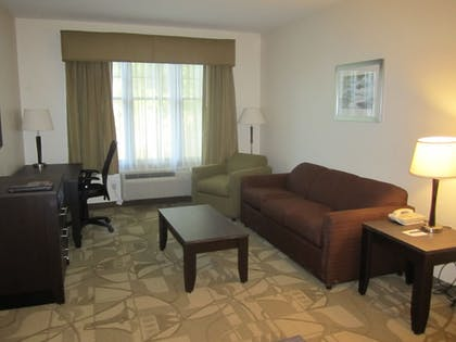 Living Room | Best Western Plus The Inn & Suites At The Falls