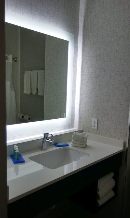 Bathroom | Holiday Inn Express & Suites Chicago West - St Charles