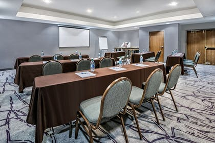 Meeting Facility | Holiday Inn Express Hotel & Suites Fort Worth Southwest I-20