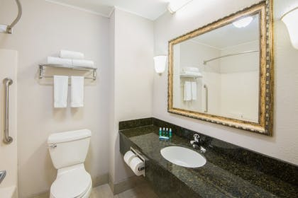 Bathroom | Holiday Inn Express Cleveland Airport - Brookpark