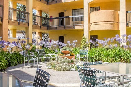 Terrace/Patio |  | Comfort Inn and Suites San Francisco Airport North