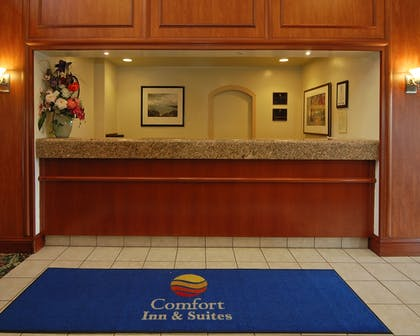 Reception |  | Comfort Inn and Suites San Francisco Airport North
