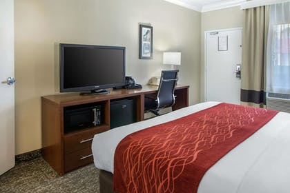 Guestroom |  | Comfort Inn and Suites San Francisco Airport North