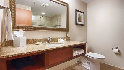Bathroom | Best Western Plus Oswego Hotel and Conference Center