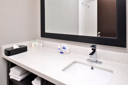 Bathroom | Best Western At O'Hare