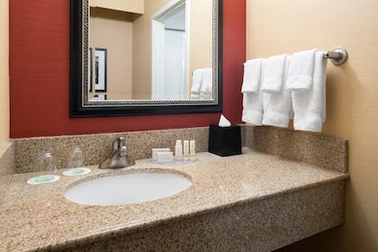 Bathroom Sink | Courtyard by Marriott Seattle Bellevue/Redmond
