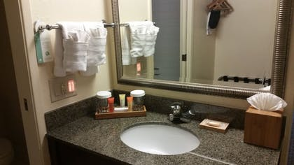 Bathroom | Best Western Plus Garden Court Inn