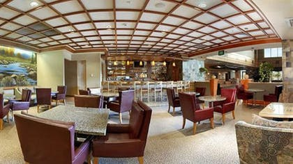 Hotel Bar | DoubleTree by Hilton Hotel Denver - Stapleton North