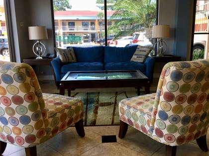 View from Hotel | Hotel South Tampa & Suites
