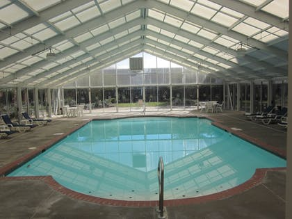 Indoor Pool | Quality Suites Lake Wright - Norfolk Airport