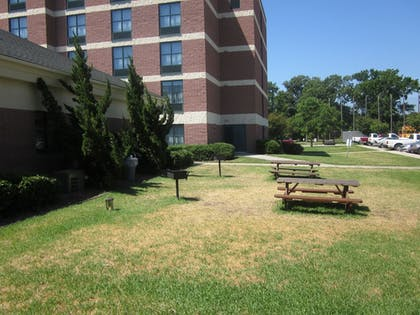 BBQ/Picnic Area | Quality Suites Lake Wright - Norfolk Airport