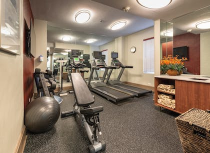 Fitness Facility | Holiday Inn Express Chicago-Magnificent Mile