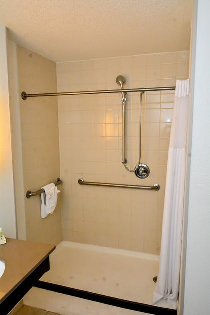 Bathroom Shower | Holiday Inn El Paso West - Sunland Park