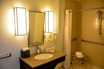 Bathroom | Holiday Inn El Paso West - Sunland Park