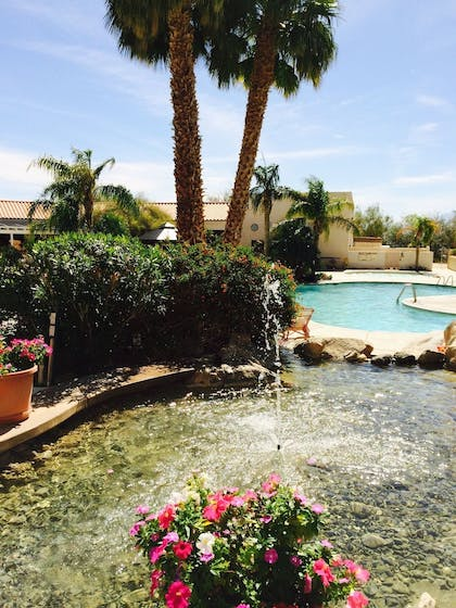 Fountain | Miracle Springs Resort & Spa