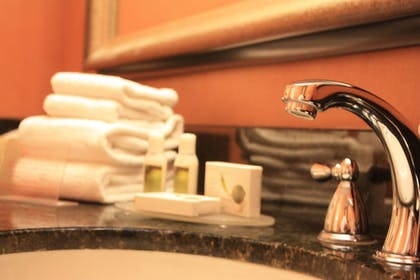 Bathroom Sink | University Plaza Hotel and Convention Center Springfield