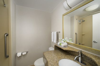 Bathroom | Holiday Inn Express Baltimore At The Stadiums