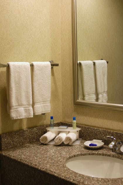 Bathroom Sink | Best Western Plus Galleria Inn & Suites