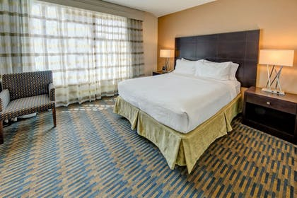 Guestroom | Holiday Inn Port of Miami - Downtown